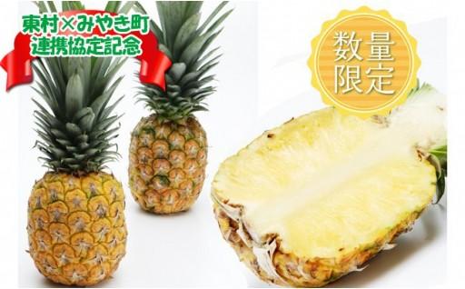 東村×みやき町連携協定記念パインアップルお任せ!