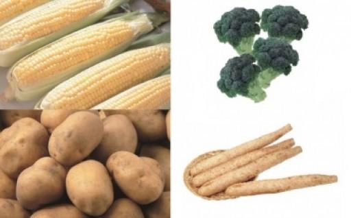 【数量限定】北海道十勝・音更町の新鮮野菜