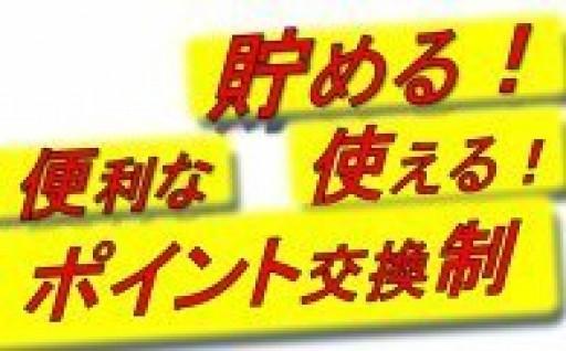 近江牛、東京西川の寝具など便利なポイント制で!