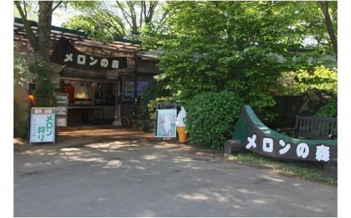 鉾田市で春のメロン狩り&常陸牛BBQ~♪