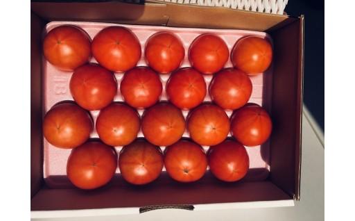 数量限定!!高糖度トマト☆