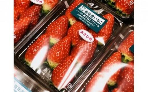 赤穂市産イチゴ
