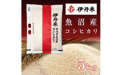 伊丹米新潟県魚沼産コシヒカリ5kg×1袋 新登場