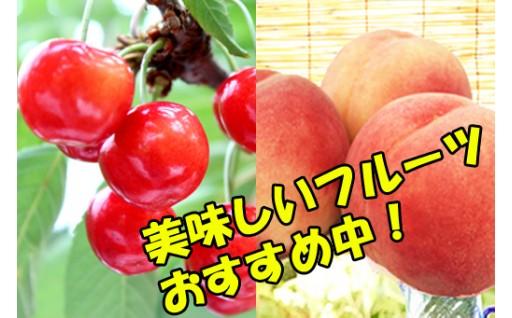 【先行予約】季節のフルーツ、好評予約受付中!