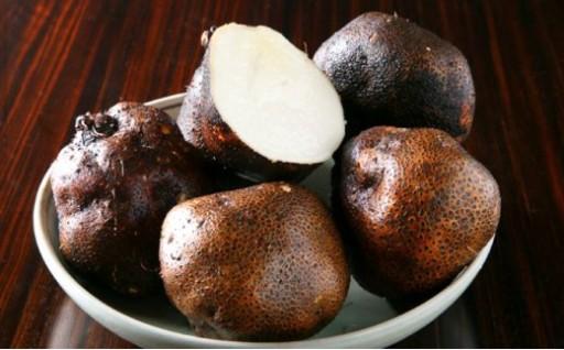 大和万葉の里「山の芋」約2.5kg