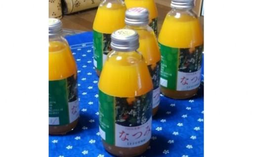 希少な柑橘を贅沢に100%ジュースに!