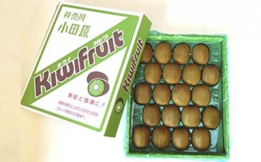 手摘み熟成キウイフルーツ