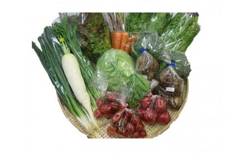 南国土佐の太陽の恵み★季節の野菜のセットです!