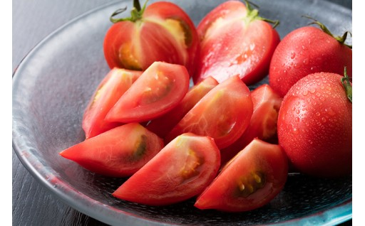 今が旬のルネッサンストマトの受付再開しました!!