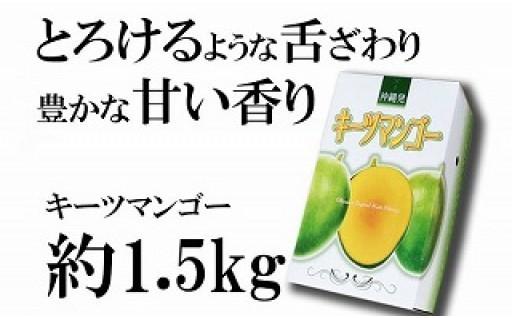 神谷ファームのキーツマンゴー約1.5kg