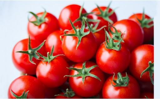 出雲の最高級トマト、トマトを超えた「超トマト」