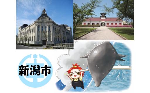 新潟市の文化施設がお得に入れます!