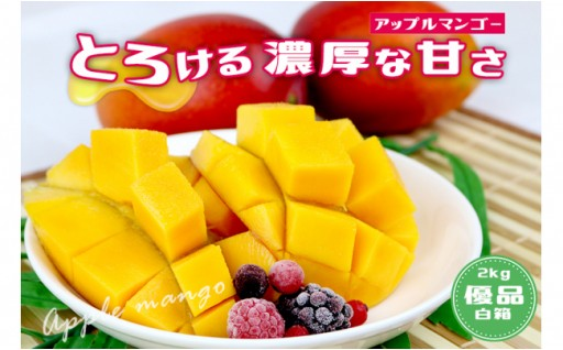 沖縄県産マンゴー4玉~6玉(約2kg)白箱・優品