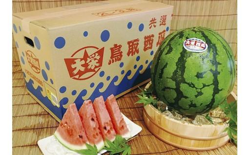 【ブランド】大栄西瓜 1玉