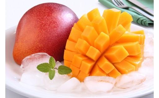 南国フルーツの美味しい季節です。
