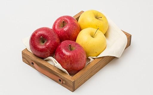 【予約受付開始】旬の果物セット5kg