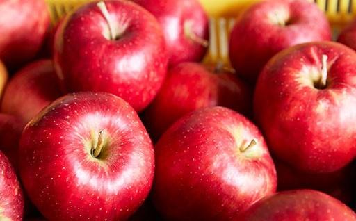【米崎りんご】予約始めました