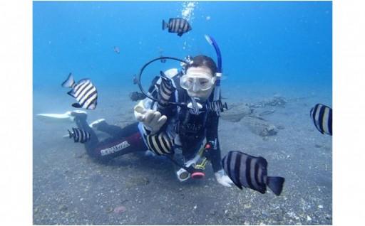 県内一長い海岸線を持つ沼津市で体験ダイビング!