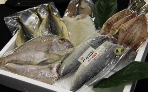 【大人気!】魚市場厳選 玄界灘の魚 干物セット
