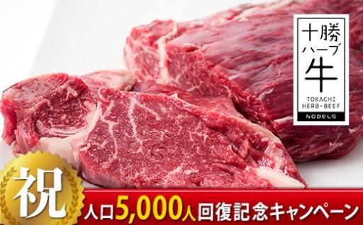 【数量限定】十勝ハーブ牛ヒレミニョンブロック