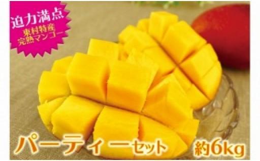 東村特産完熟マンゴーパーティーセット約6kg