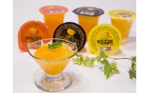 熊本の柑橘を満喫!【果実ゼリーセット】