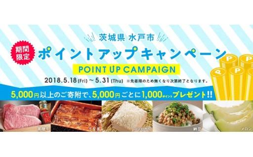 水戸市ポイントアップキャンペーン