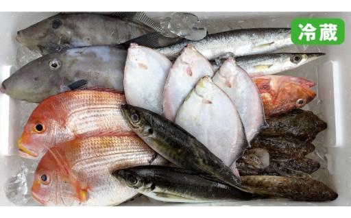 10月までしか味わえない!! 朝獲れ鮮魚セット