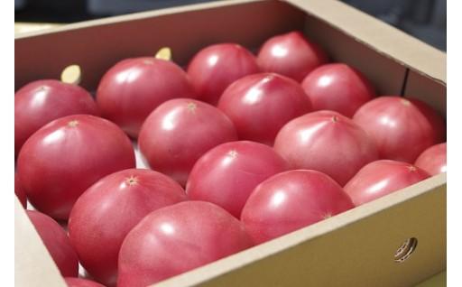生産者の思いが詰まった美味しいトマトいかがですか