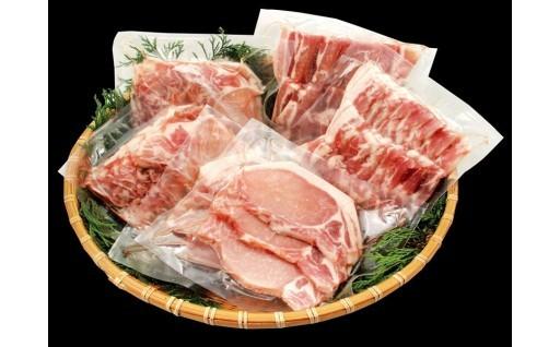 大人気の日向豚の盛りだくさんセット数量限定です!