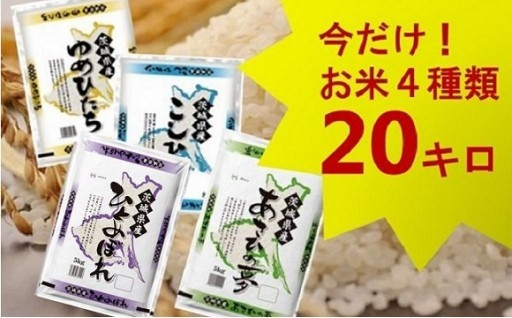 どーんと4種類!茨城県産のお米4種20kgセット