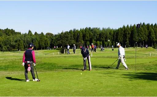 パークゴルフシーズン到来!芝が気持ち良い季節!