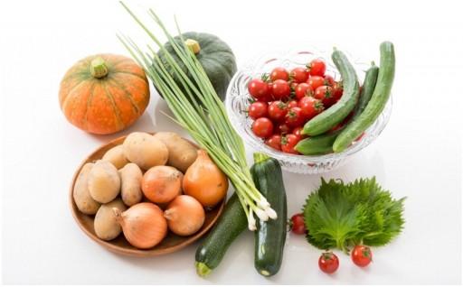 【7月発送予約受付開始!】旬の野菜セットをお届け