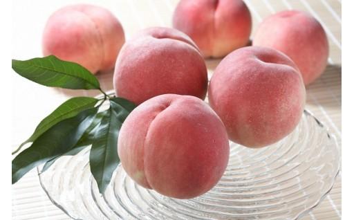 桃農家ヤマシタの桃の受付始まりました!!