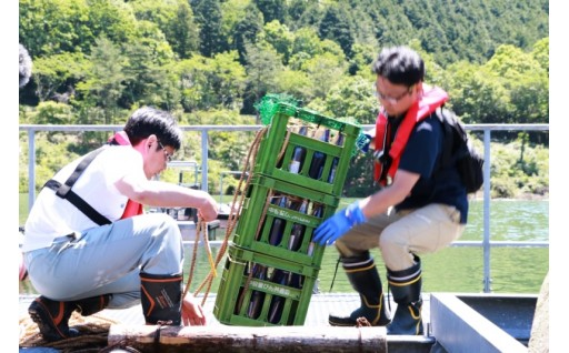 滝畑ダム湖底熟成日本酒。超レア!ふるさと納税限定