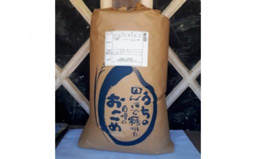 人気の玄米「美浦村産コシヒカリ」15kg