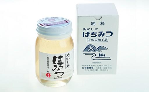 【新蜜7月より発送可能】アカシア蜂蜜500g