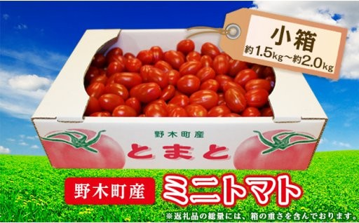 申込6/17まで!大人気野木のトマト。