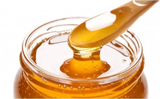 村自慢!自然養蜂のニホンミツバチの貴重はちみつ