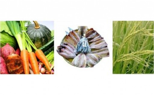 野菜と干物のプチ定期便 7月開始分の受付終了間近