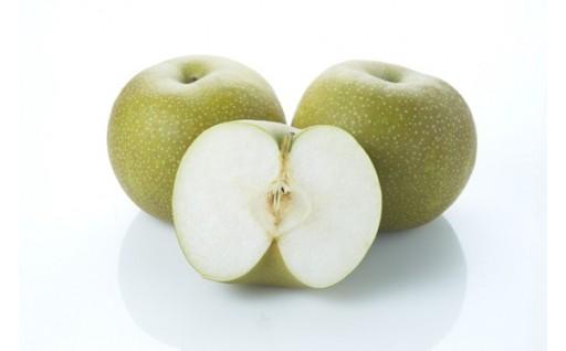 【人気返礼品】今年は5㎏もあります! 『幸水』梨
