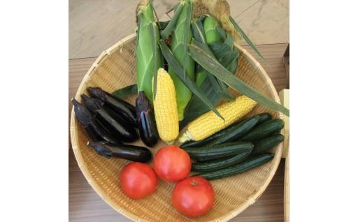 6月下旬から期間限定で新鮮な野菜が登場!
