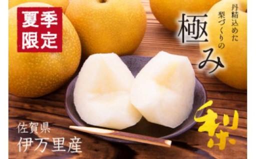【佐賀県伊万里市】毎年人気!豊水梨の受付中です