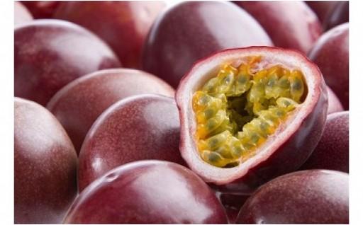 南国の恵みパッションフルーツ ご家庭用1.5kg