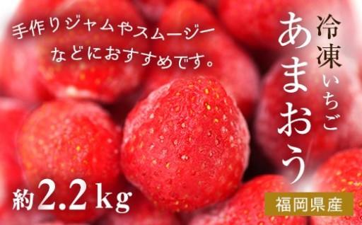 冷凍いちご(あまおう)約2.2kg