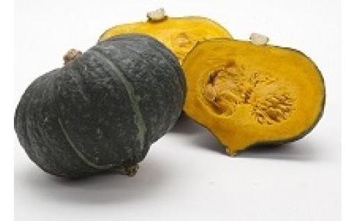 【6/24〆切】九重栗(くじゅうくり)かぼちゃ