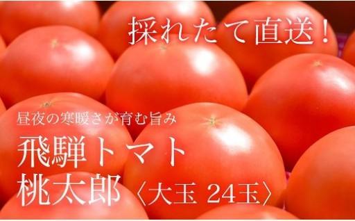 産地直送!飛騨トマト・桃太郎〈大玉24玉〉