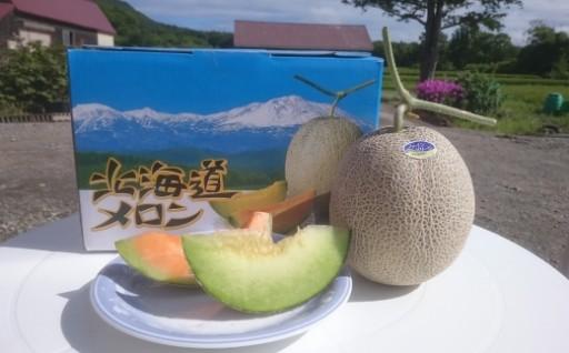 北海道の甘ーいメロン 食べ比べセット