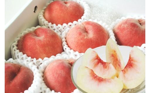 9月に食べられる桃です!「北限の桃」