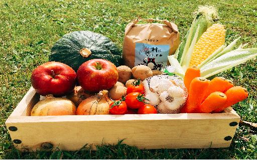 その日の朝、旬の野菜を詰めてお届けします!